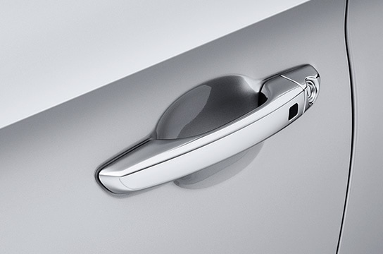 Chromed door handles
